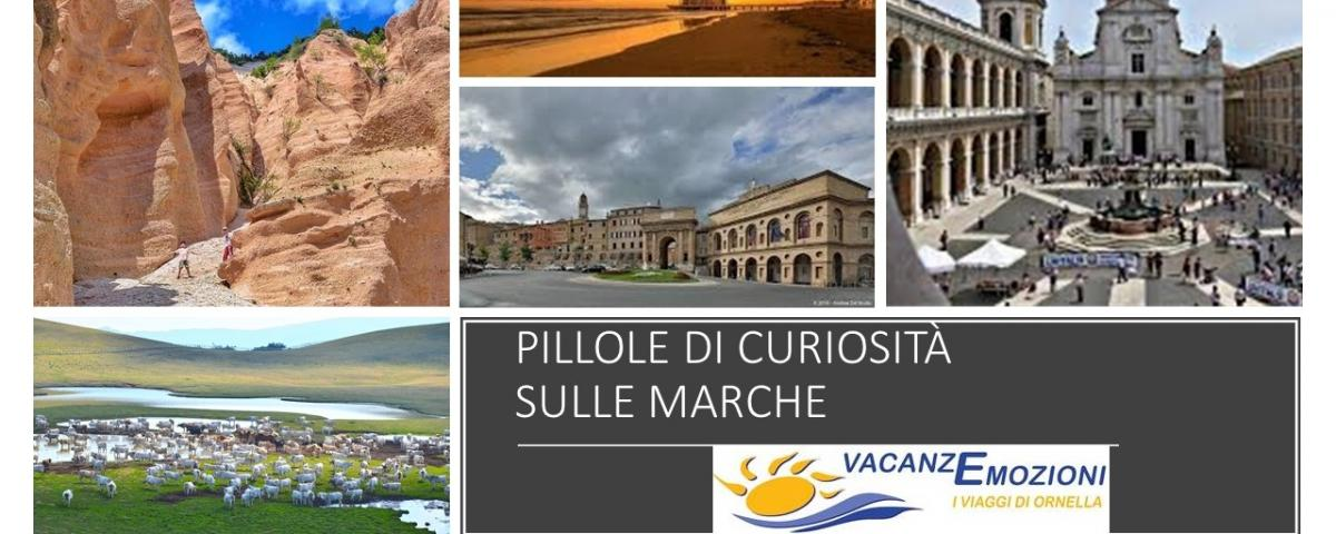 PILLOLE DI CURIOSITA' SULLE MARCHE